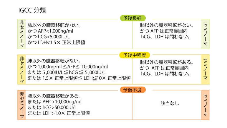 精巣腫瘍のIGCC分類
