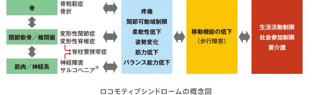 ロコモティブシンドロームの概念図